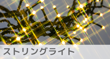 LEDイルミネーション電飾ストリングライト シャンパンゴールド