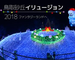 LEDイルミネーション販売事例 鳥取砂丘イリュージョン2018年