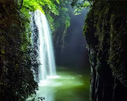 宮崎県のイルミネーション販売店舗をお探しならHGイルミネーション.comへお任せ下さい!