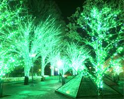 LEDイルミネーション販売店舗(熊本県)