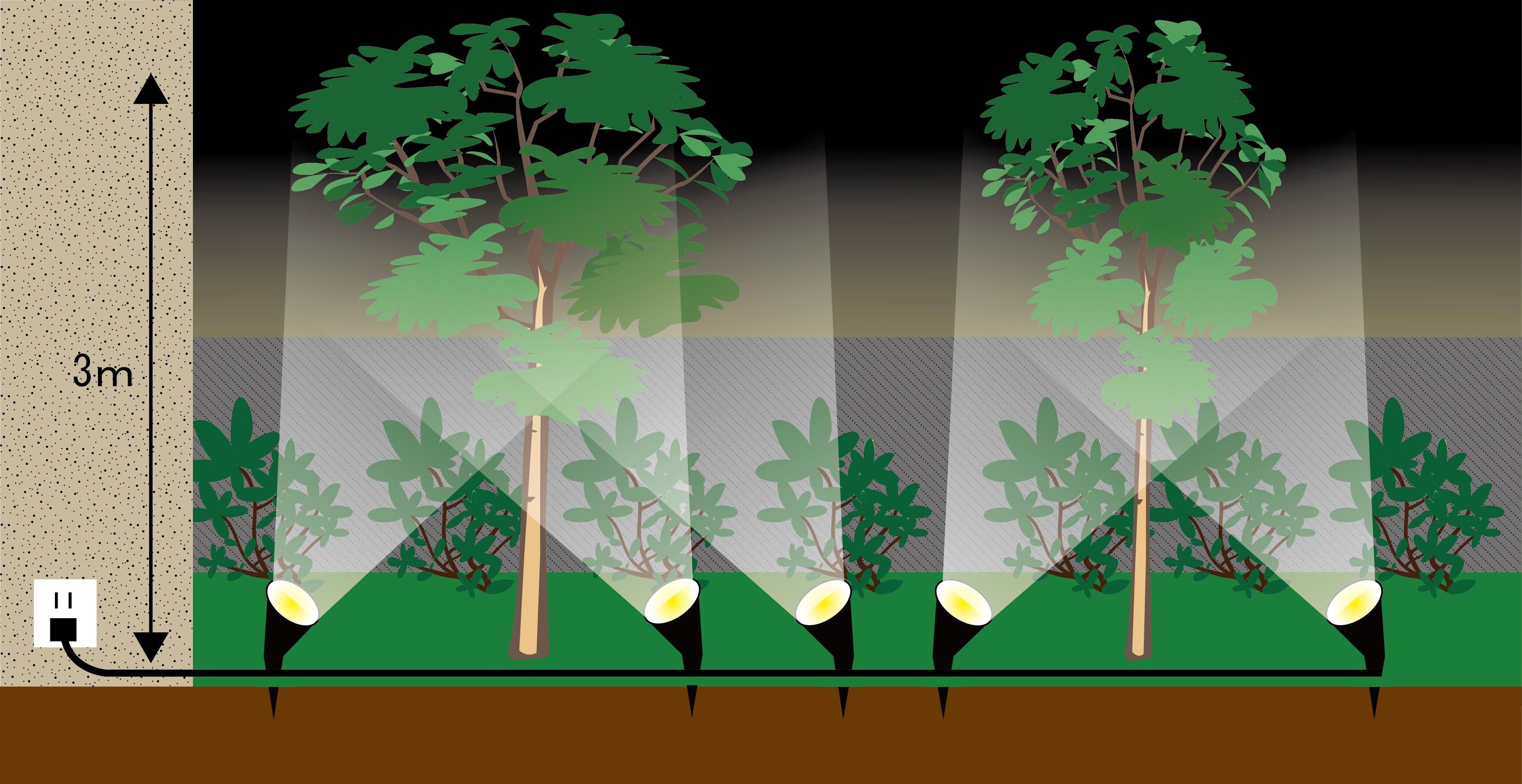 LEDガーデンアップスポットライト 照射イメージ